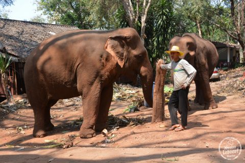ganesha-park-thailand-09