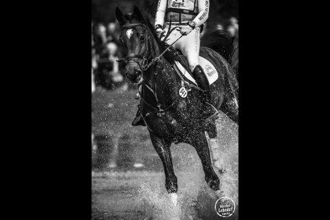 lion-angers-equitation-2016-leboeuf-10