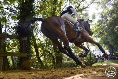 lion-angers-equitation-2016-leboeuf-3