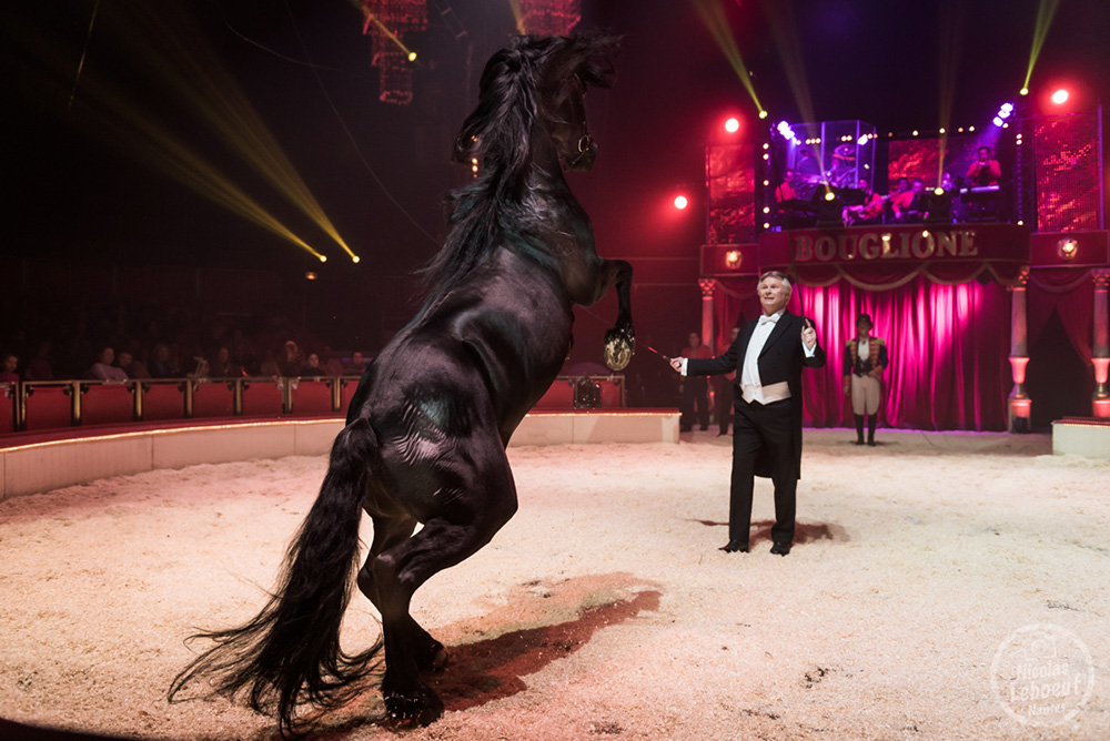 Cirque Bouglione Surprise Cheval