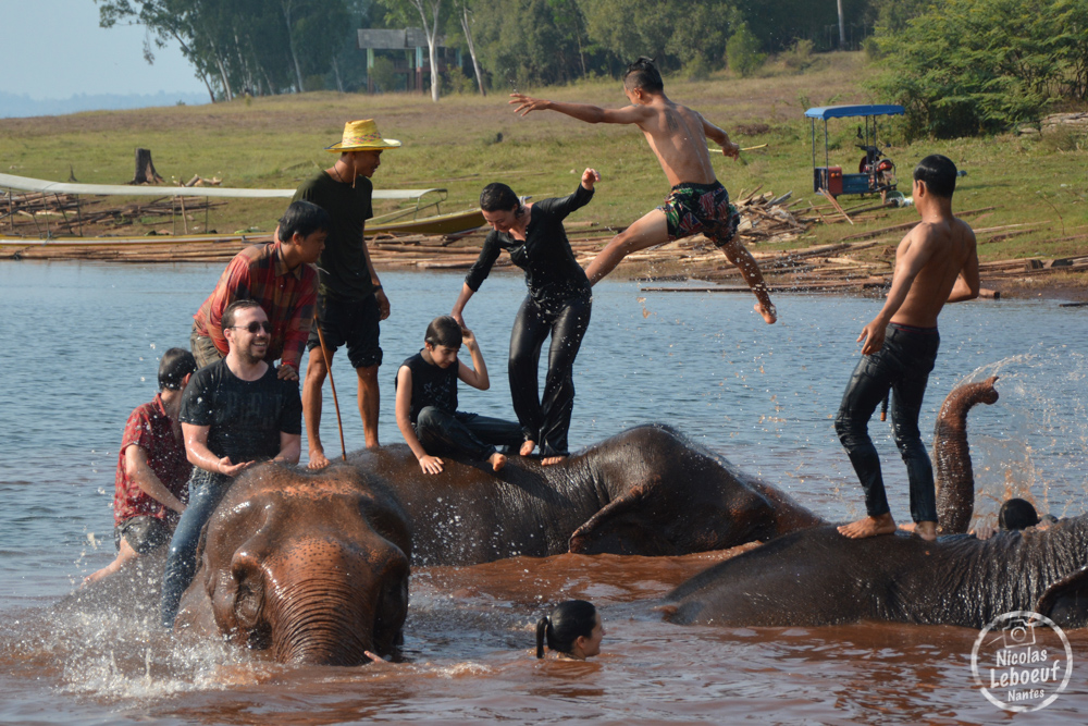 Ganesha Park Thailande Baignade éléphant